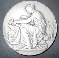 02 St Quentin Médaille Ets Henry Mariolle 1824-1924 Attribué à Mr Joseph Liegeois Par F.Chabaud Bronze Argenté Diam 5cm - Professionali / Di Società