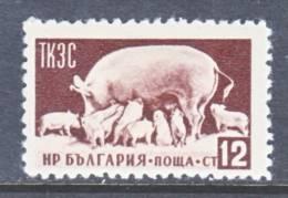 Bulgaria  884  *  FAUNA  PIGS - 1945-59 People's Republic