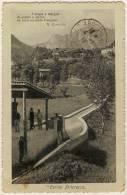 ITALIA Carnia Pittoresco Poesia G. Carducci Transport De L'eau - Udine