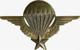 INSIGNE ANCIEN BREVET PARACHUTISTES NUMEROTE 3337.. (6 Chiffres) En DRAGO ROMAINVILLE DEPOSE ETAT EXCELLENT - Armée De Terre