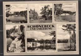 31956   Germania,    Schonebeck  Und  Umgebung,  NV - Schoenebeck (Elbe)