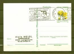 REPUBLIK ÖSTERREICH , 09/07/1990  Radwander Bare Kellergassen - HADRES  (GA4706) - Vins & Alcools