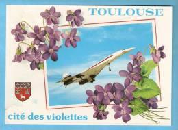 CP - Le Supersonique Concorde En Vol - Toulouse- Cité Des Violettes- - Avions