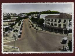 Cpsm  Angola  Luanda  Um Trecho Da Avenida  Salvador Carreia     THI2 - Angola