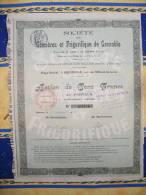 """LOT  DE 5 TITRES DE 1906"""" GLACIERE ET FRIGORIFIQUE DE GRENOBLE"""" // ISERE - Actions & Titres"""