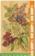 """""""Blumenstrauß""""  Um 1900/1910  , Ansichtskarte Mit Frankatur, Mit Stempel, - Botanik"""