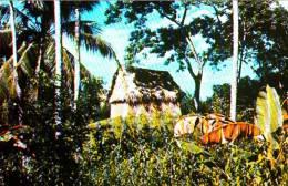 Honduras - Tipica Casa De Manaca - Maison House Architecture - Condition VG - Honduras