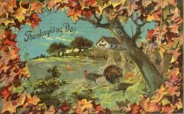 Illustrée Gaufrée : THANKSGIVING DAY ( Tuck ) - Thanksgiving