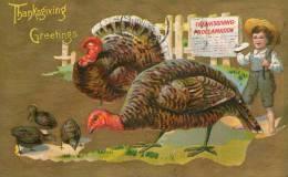 Illustrée Gaufrée : THANKSGIVING GREETINGS - Thanksgiving