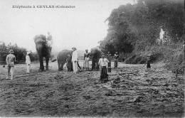 ELEPHANT - CEYLAN SRI LANKA - Sri Lanka (Ceylon)