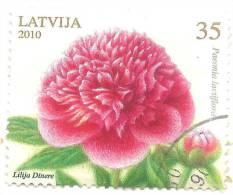 LATVIA 2010 Flower Peony Used (O) - Lettonie
