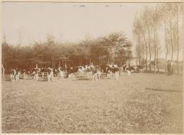 Leuna, OT Friedensdorf, Saalekreis, Sa.-Anhalt, Weidebild, Landwirtschaft, FOTO 1921, Original - Berufe