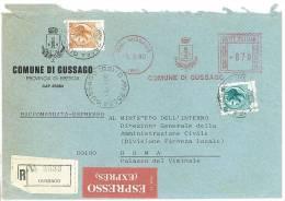GUSSAGO 25064  PROV. BRESCIA  - ANNO 1980 - R EXP - STORIA POSTALE DEI COMUNI D´ITALIA - POSTAL HISTORY - Marcophilie - EMA (Empreintes Machines)