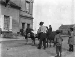 PHOTO  - COURSEULLES-sur-MER  14 -  Voiture à Cheval - Plaques De Verre