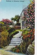 PATHWAY TO BERMUDA COTTAGE - Bermudes
