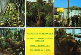 "Bellissima Cartolina Pubblicitaria     ""  Vivaio Di Barbarossa  - Imperia "" - Imperia"