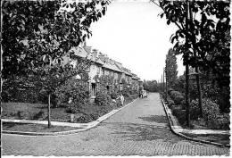 Boitsfort 29: Le Logis. Rue De L'Autruche - Watermael-Boitsfort - Watermaal-Bosvoorde