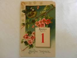 CPA 1er Janvier   Oiseau, Branche Fleurie - New Year
