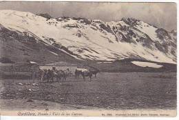 CHILE CORDILLERA POSADA I VALLE DE LAS CUEVAS TARJETA POSTAL  CONRADS Vintage Original Postcard Ca1900 Ak Cpa [WIN3_422] - Chile