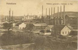 Hunedoara Vederea Generala A Uzinelor De Fier Mines De Fer Iron  Edit Tintea - Roumanie