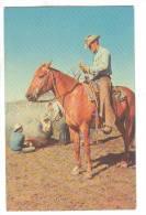 Man On A Horse, Branding Calves, 1950-1960s - Pferde