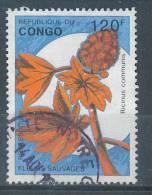 VEND TIMBRE DU CONGO ( BRAZZAVILLE ) , N° ???? , 1998 , COTE : ?, !!!! - Afgestempeld