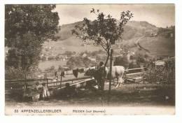 Appenzellerbilder  Heiden ( Auf Brunnen) - Belebt - AR Appenzell Rhodes-Extérieures