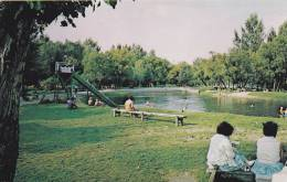 River Bend Park, Erected And Maintained By The Lions Club Of Neepawa, Manitoba, Canada, 40-60s - Manitoba