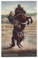 LLOYD MEYERS On BIG ENOUGH ~RODEO SCENE~ C1940s R. R. DOUBLEDAY Postcard~HORSE (c2864] - Postcards