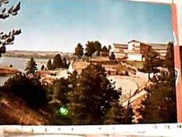 SILA LAGO CECITA COLONIA  MONOPOLI DI STATO VB1981 DY6288 - Cosenza