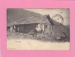CPA - Sur L' Alpe - Vache Prés D'un Chalet - Sin Clasificación