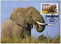 WWF 1983 Uganda Afrikanischer Elefant/African Elephant  WWF Rare 10/- Reprint Maxicard - W.W.F.