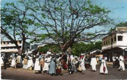 Afrique-Guinée-CONAKRY-(5 ) (Animation )- AFRICOLOR (Cpsm Photo Editions:La Carte Africaine N°656) *PRIX FIXE - Guinée