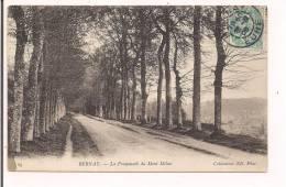 27 - BERNAY : La Promenade Du Mont Milon - 1905 - - Bernay