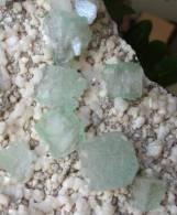 - HUGE - CUBIC GREEN BLUE APOPHYLLITE ON WHITE HEULANDITE SPECIMEN - 2.464 GRAMS - Minerals