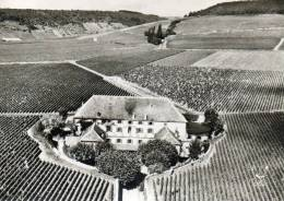 ALOXE CORTON La Cuverie Du Château Corton Grancey Propriété Louis Latour - France