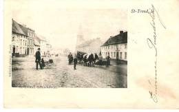 St-Truiden : Schurhoven --- Koeienspan --- 1902 - Sint-Truiden