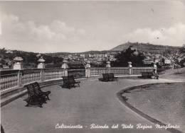 CALTASSINETTA 1951 ROTONDA DEL VIALE REGINA MARGHERITA - Caltanissetta