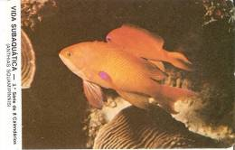 CALENDARIO DEL AÑO 1987 DE PEZ  (FISH) (CALENDRIER-CALENDAR) - Calendriers