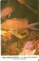 CALENDARIO DEL AÑO 1987 DE UN PEZ  (FISH) (CALENDRIER-CALENDAR) - Calendriers