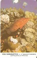 CALENDARIO DEL AÑO 1987 DE UN PEZ  (FISH) (CALENDRIER-CALENDAR) - Tamaño Pequeño : 1981-90