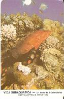 CALENDARIO DEL AÑO 1987 DE UN PEZ  (FISH) (CALENDRIER-CALENDAR) - Calendari