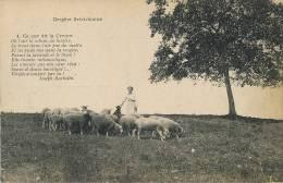 Argenton Sur Creuse Bergere Berrichonne Poeme Par Joseph Barbotin , Lavande, Thym, - Other Municipalities