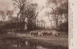 Cucq A Etaples Tableau De Felix Planquette Né A Arras Edit Noyer Troupeau Mouton Sheep - France