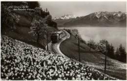CPSM - SUISSE :  4754 - Chemin De Fer Des Pléïades S/VEVEY - VD Vaud