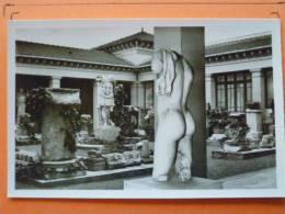 E1-Algerie-Cherchell-cour Du Musee--carte Photo - Algeria