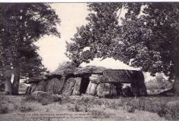 Essé..La Roche Aux Fées..menhirs..dolmens..mégalithes..schiste - Sonstige Gemeinden