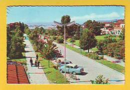 Postcard - Ohrid     (V 15051) - Macédoine
