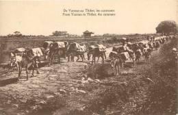 : Réf : L-12-1823 :  Tibet - Tibet