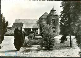 Belgique CP Daverdisse : Le Vieux Château - Daverdisse